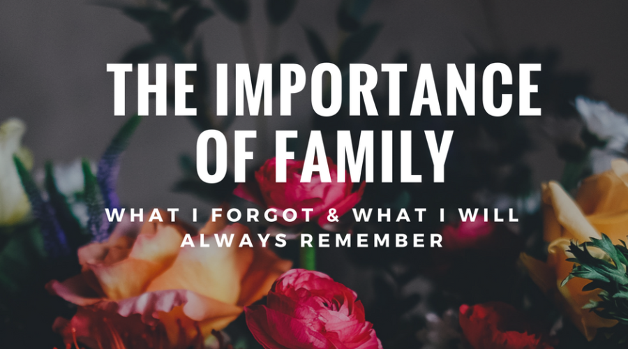 The Importance of Family In Our Life